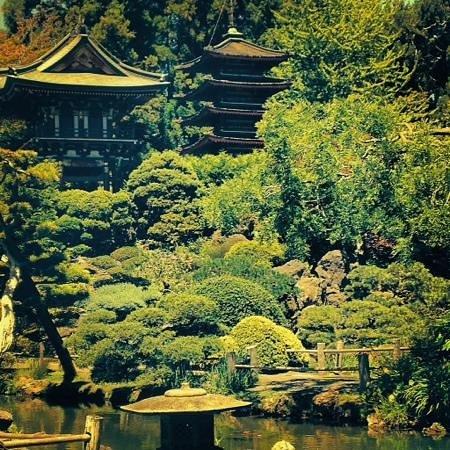 Japanese Tea Garden : pagoda