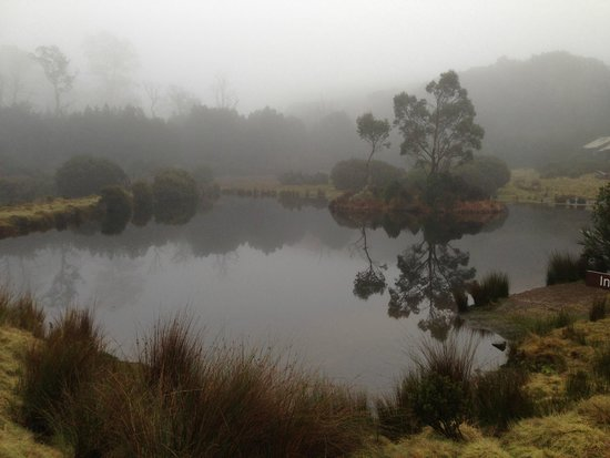 Peppers Cradle Mountain Lodge : View from the Lodge
