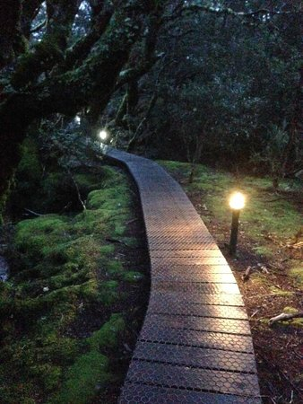 Peppers Cradle Mountain Lodge : One of the paths from the cabins to the lodge