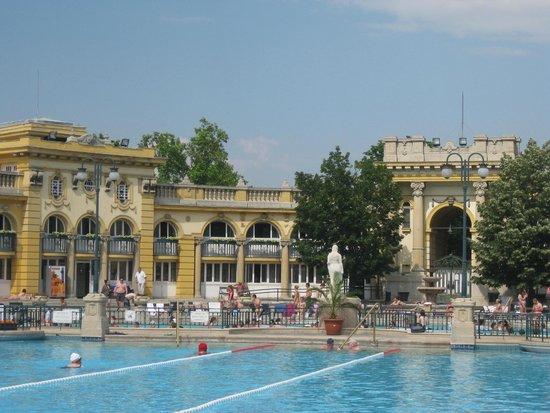 Széchenyi Baths and Pool : The baths.