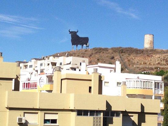 Hotel Mainare Playa Fuengirola: The bull! ��