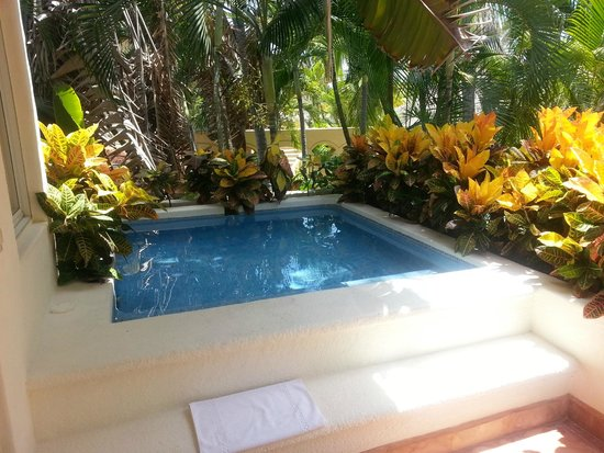 Viceroy Zihuatanejo: Our Private Pool