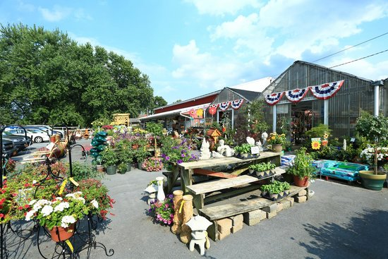 Pennings Farm Market and Orchard: Flower Store