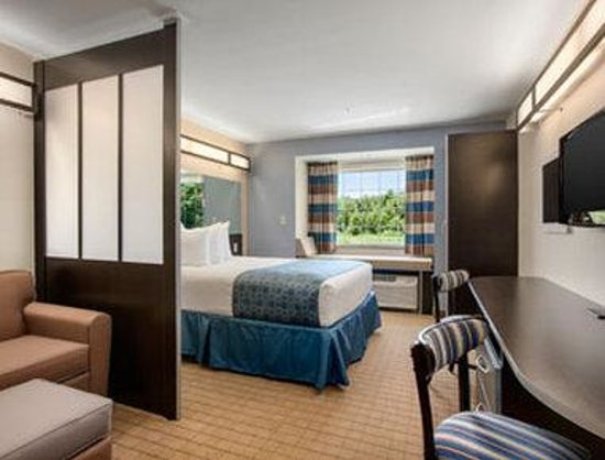 Microtel Inn & Suites by Wyndham Belle Chasse/New Orleans: Guest Room