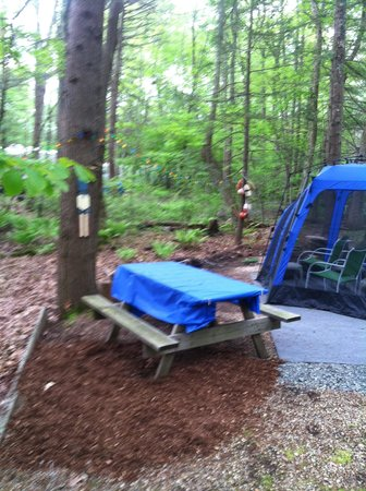 Rusnik Family Campground: Simple Camp