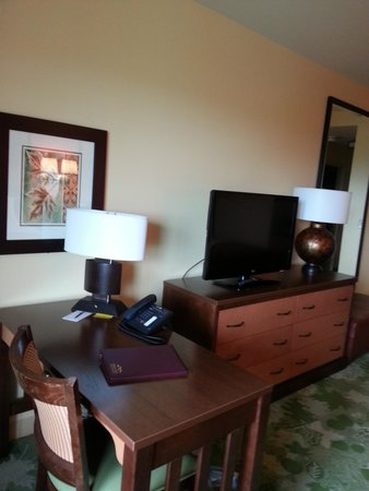 Canaan Valley Resort : nicely decorated