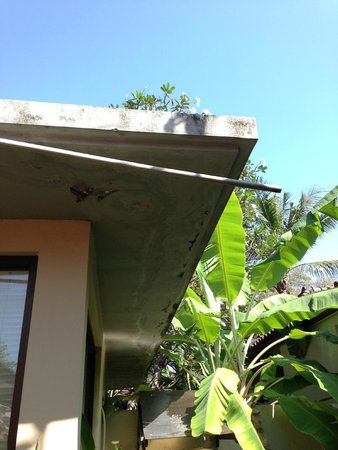 Segara Village Hotel: The constant dripping air con