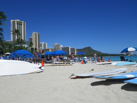 Outrigger Waikiki Beach Resort : View from lounge chairs on beach