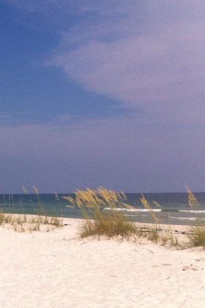 But on a positive note, Perdido Key is beautiful! Just not at Ocean Breeze East 202!