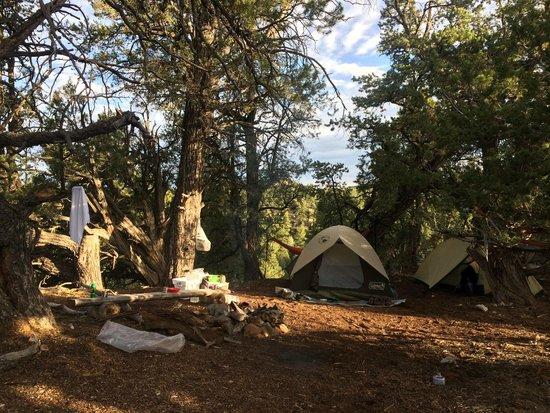 Zion Ponderosa Ranch Resort : Campsite