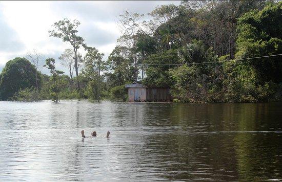 Tauari Inn Lodge : Swimming with the pirañas