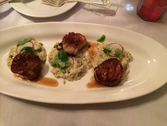 The Blue Rose Inn & Restaurant: Scallops and risotto entree: fantastic!