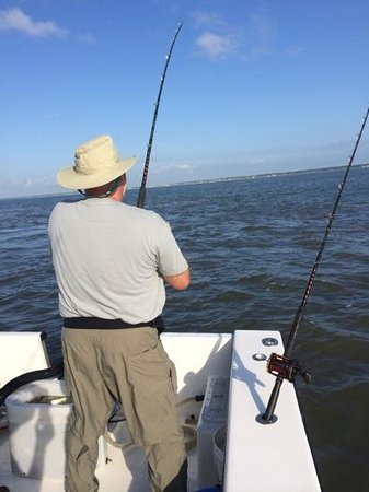 Morningstar Marina at Golden Isles - Boat Rentals : Reeling one in