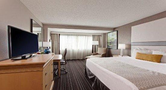 Wyndham Irvine-Orange County Airport: King Guest Room