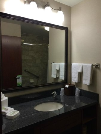 Drury Plaza Hotel Nashville Franklin: Bathroom