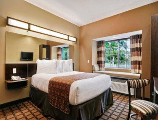 Microtel Inn & Suites by Wyndham Buda at Cabela's : 1 Queen Bed Guest Room