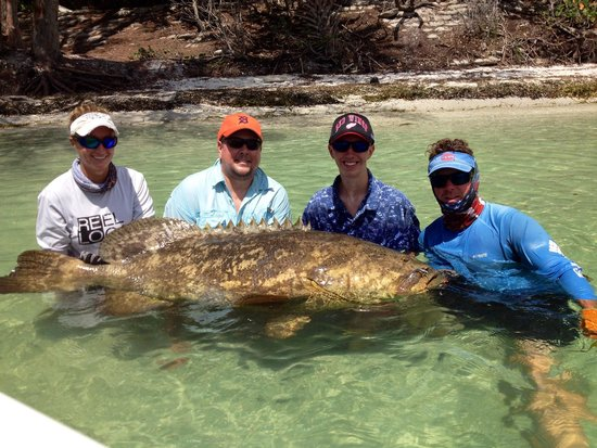 Florida Inshore Xtream Charters: 15yr old son catches nice 200+lb Goliath