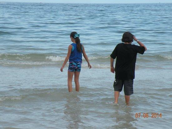 Bon Aire Resort: st pete beach