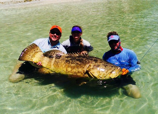 Florida Inshore Xtream Charters: 12yr old daughter catches 150lb Goliath