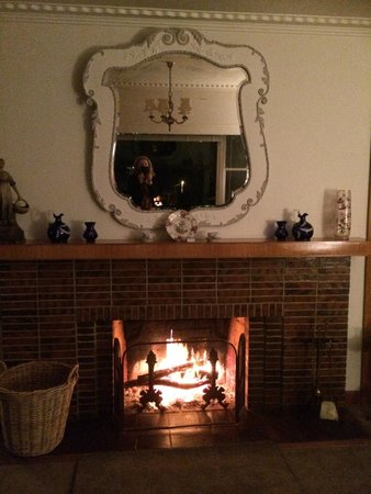Trevallyn House B & B : Fireplace in cozy living area.