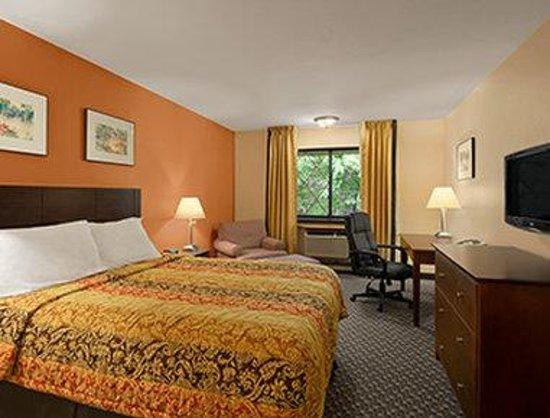 Days Inn & Suites Stevens Point: Single Queen Room