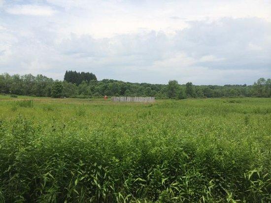 Fort Necessity National Battlefield: Fort Necessity Battlefield from a distance