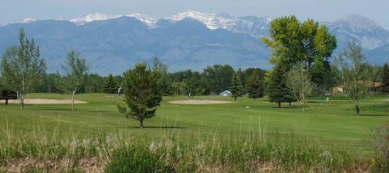 Holiday Inn Express Hotel And Suites Belgrade: Signature Cottonwood trees and Bridger Mountains