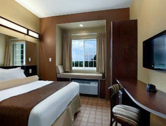 Microtel Inn & Suites by Wyndham Sayre: Standard One Queen Room