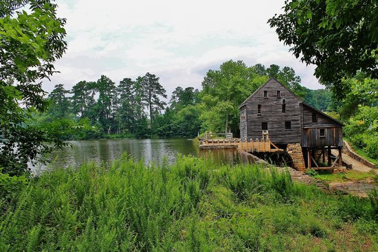 Historic Yates Mill County Park: From the trail