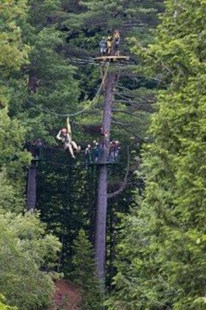The Lodge at Lincoln Station Resort: Ziplining