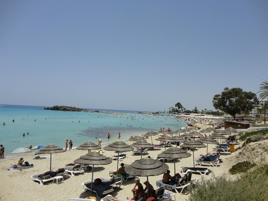 Nissi Beach Resort: Nissi Bay and Sun Beds