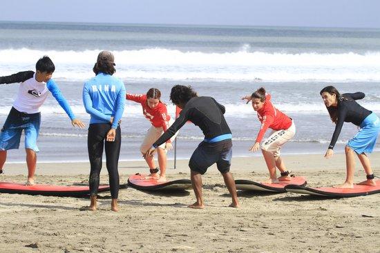 Pro Surf School: 7
