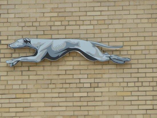 Freedom Rides Museum: Greyhound!