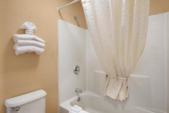 Baymont Inn & Suites Florence/Muscle Shoals: Bathroom