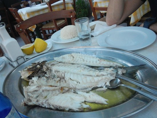 Taverna Gitoniko: $125 Fish!  Offensively Priced.  Shame on you!