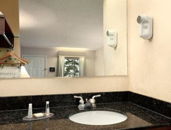 Baymont Inn & Suites Roanoke Rapids: Accessible Bathroom