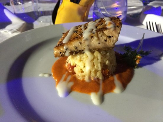Club Med Turkoise, Turks & Caicos: Salmon over rice