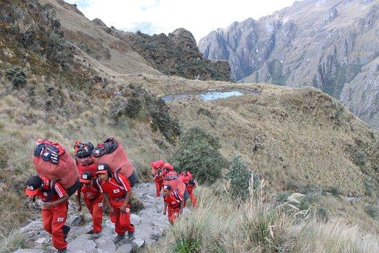 Llama Path: Red army