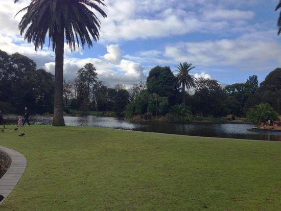 Royal Botanic Gardens Melbourne : Royal Botanic Gardens 13