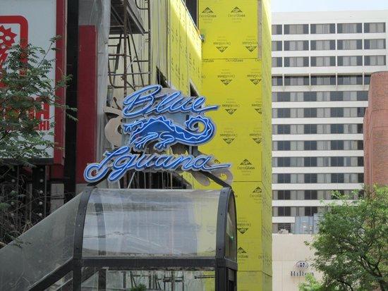 Blue Iguana: Front door sign