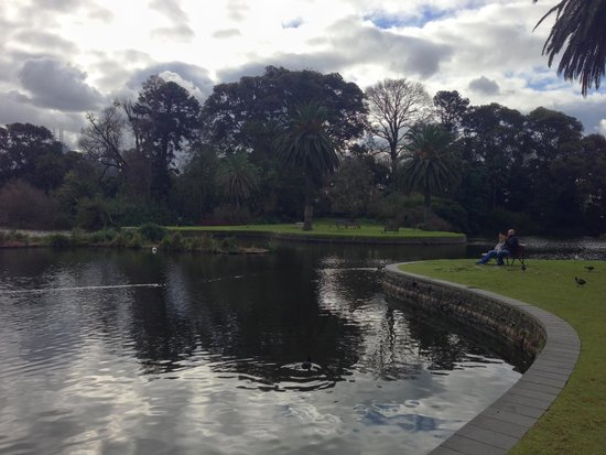 Royal Botanic Gardens Melbourne : Royal Botanic Gardens 6