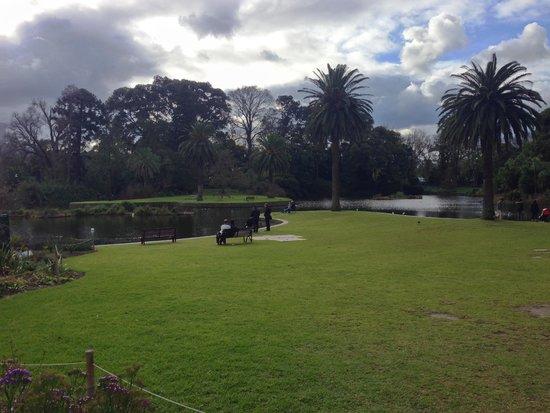 Royal Botanic Gardens Melbourne : Royal Botanic Gardens 3