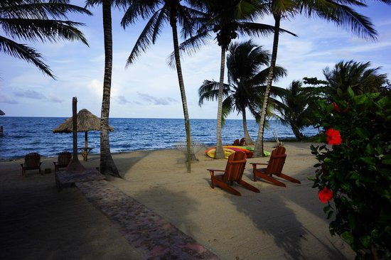 Beaches And Dreams: Wonderful view