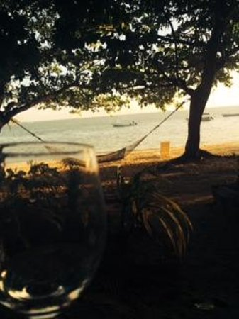 Malolo Island Resort: View from our Bure