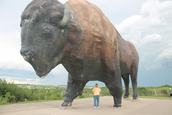 Frontier Village: That's one BIG buffalo!