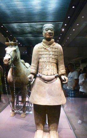 Mausolée de l'empereur Qin : Terracotta Warrior behind glass in Pit 2