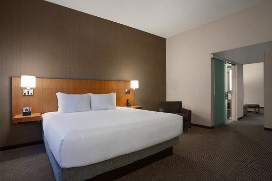Hyatt Place Minneapolis/Downtown: MSPZD_P017 King Guestroom