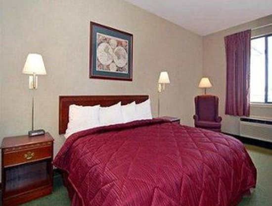 Days Inn & Suites Hickory: 1 King Bed Room