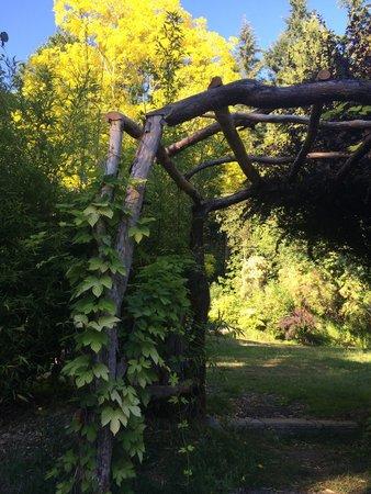 Molly Ward Gardens: Archway through garden grounds