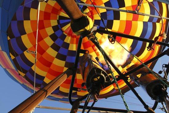 Portland Rose Hot Air Balloons: During flight